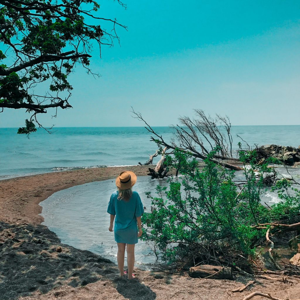 Pelee Point National Park