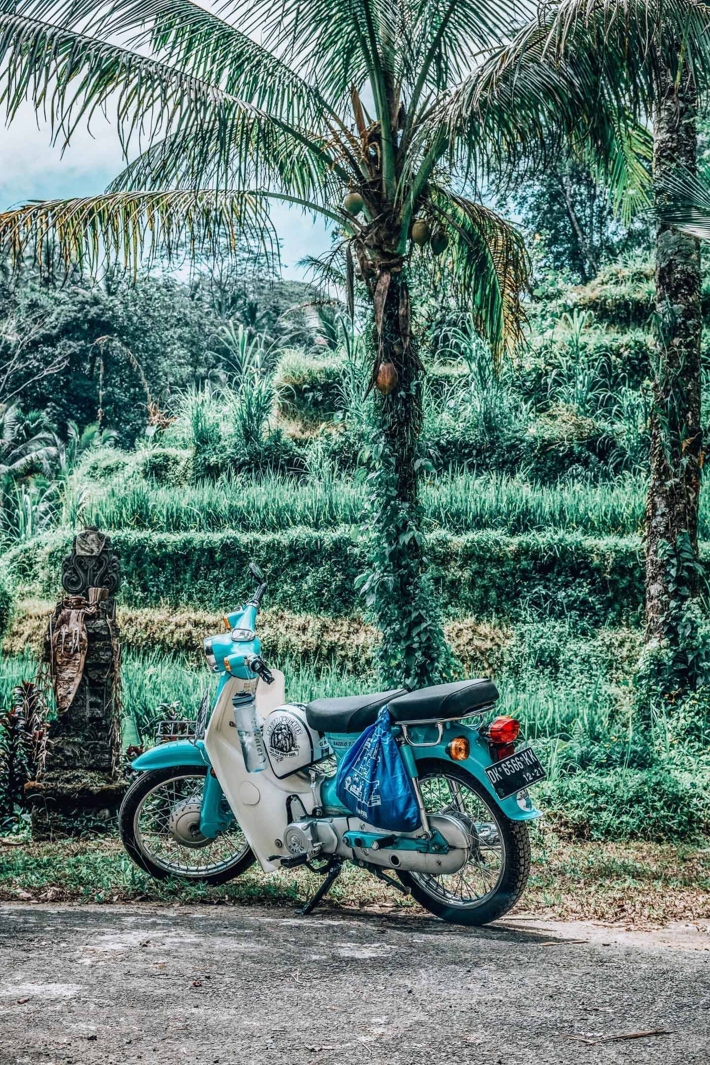 Travelling to Bali for the first time means know what to do, and what to not do in Bali, including how to rent a scooter in Bali.