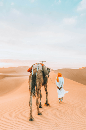 A day tour from Marrakech to the Sahara is a must for those heading to Morocco. #Morocco #Marrakech #Travel