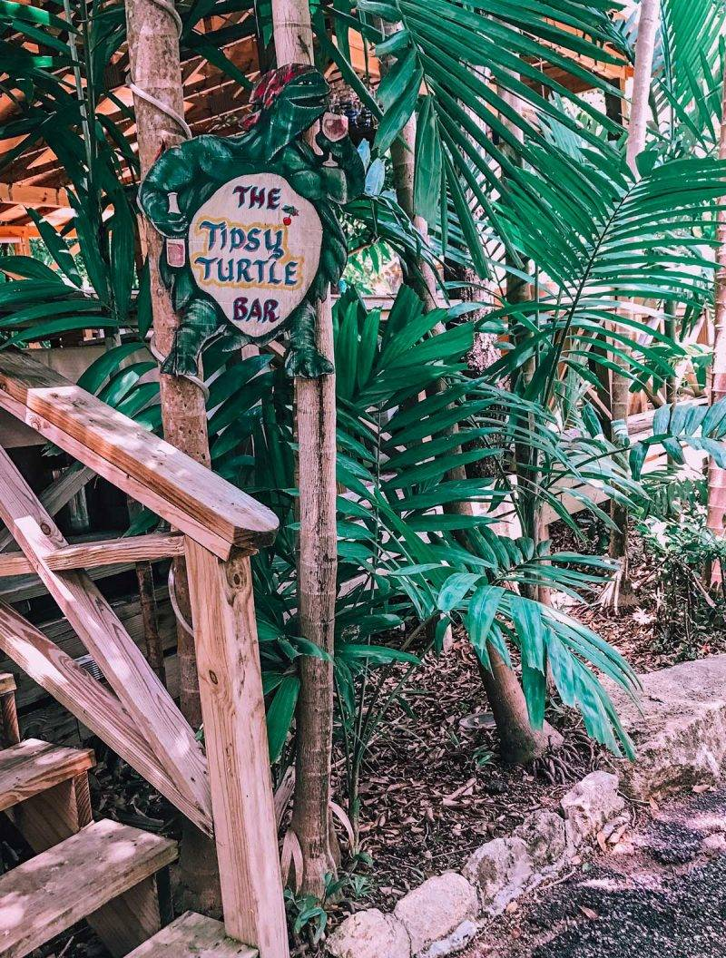 Garden of the Groves in Grand Bahama Island is one of the best places to see. This complete guides covers everything else including where to stay and what to do.