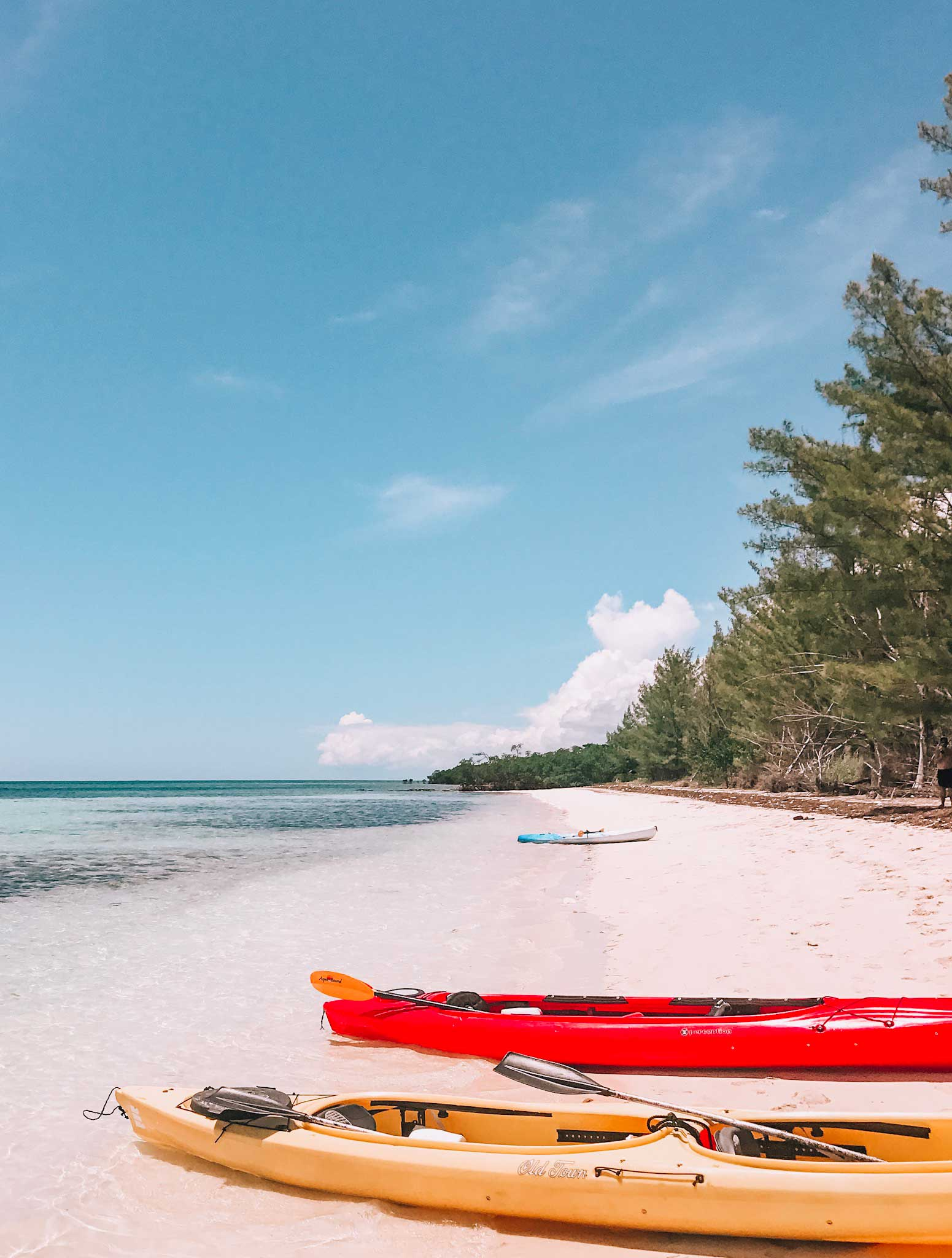 Find some of the best beaches in the world on Grand Bahama island. The complete guide covers everything you need to know  including the best beaches in Freeport Bahamas.
