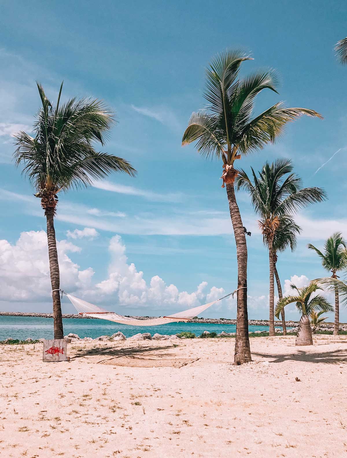 Find some of the best beaches in the world on Grand Bahama island. The complete guide covers everything you need to know! #Freeport #Bahamas #THINGSTODO