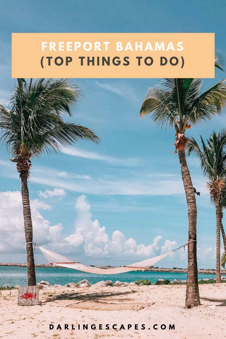 There are so many great things to do in Freeport Bahamas that finding the perfect Freeport Bahamas excursion is harder than you think. That\'s why we narrowed down the list to these 11 options. #Freeport #Bahamas #thingstodo