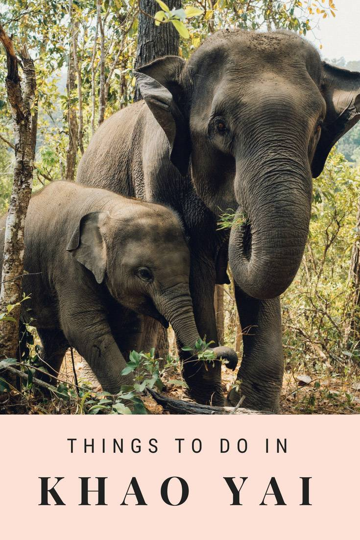 Planning your Khao Yai itinerary? Here is everything you need to know including where to stay and what to do. #Thailand #Khoayai