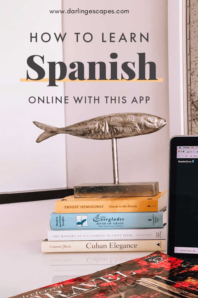 Planning a trip to Spain or Latin America soon? Learning Spanish online is a must in your preparation list! Luckily, learning the basics of Spanish for your trip is easy with this app! #Spanish