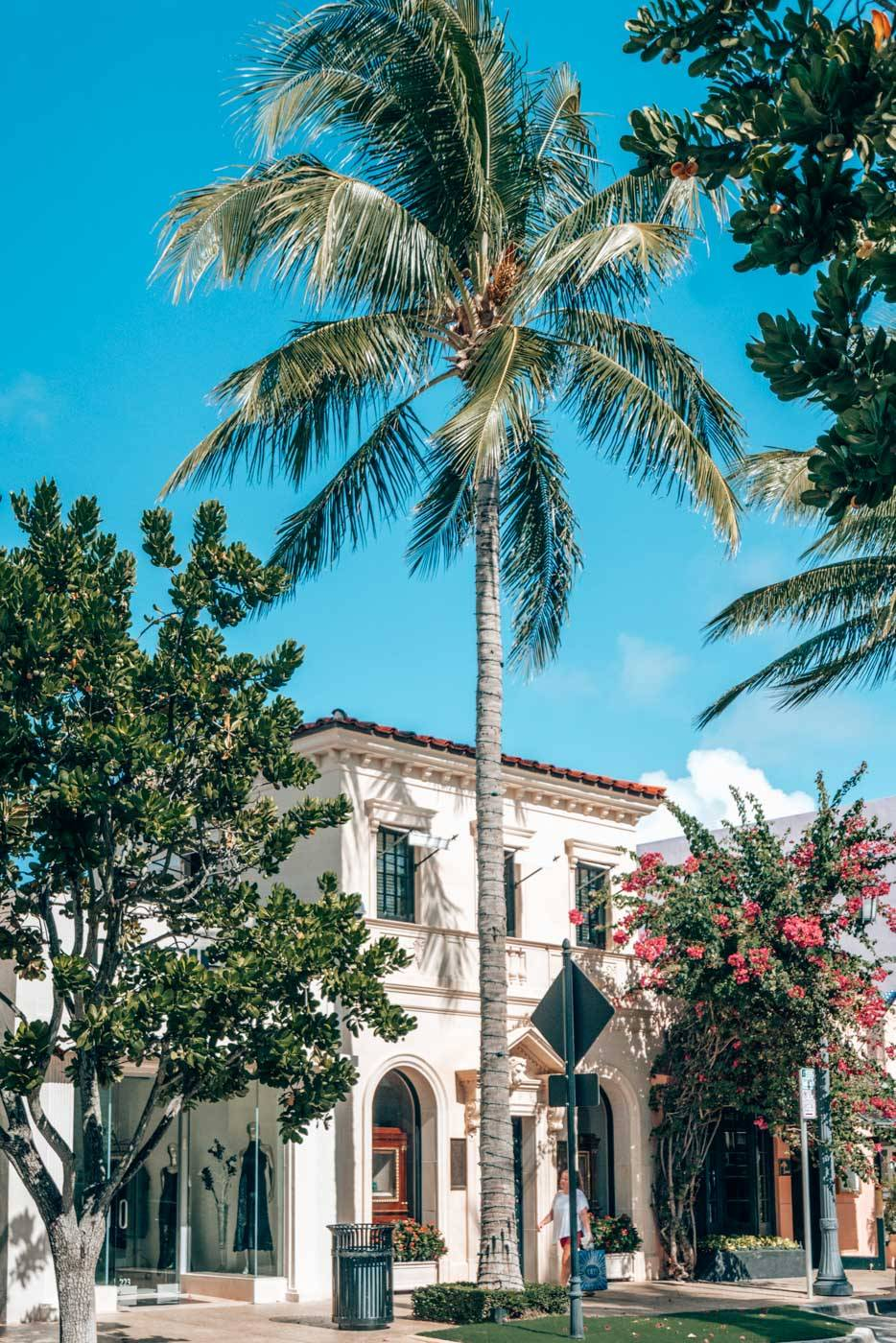 This Palm Beach Travel guide covers everything from where to stay, what to do, and where to eat.