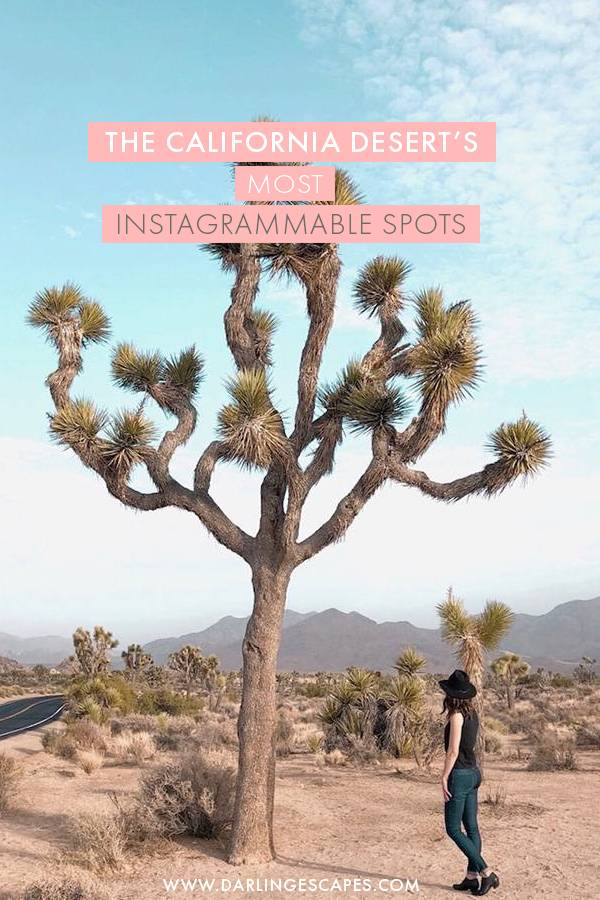 The desert is home to some of the most instagrammable spots in California and we've rounded up our top favorite photo spots in the California Desert that you need to add to your itinerary ASAP