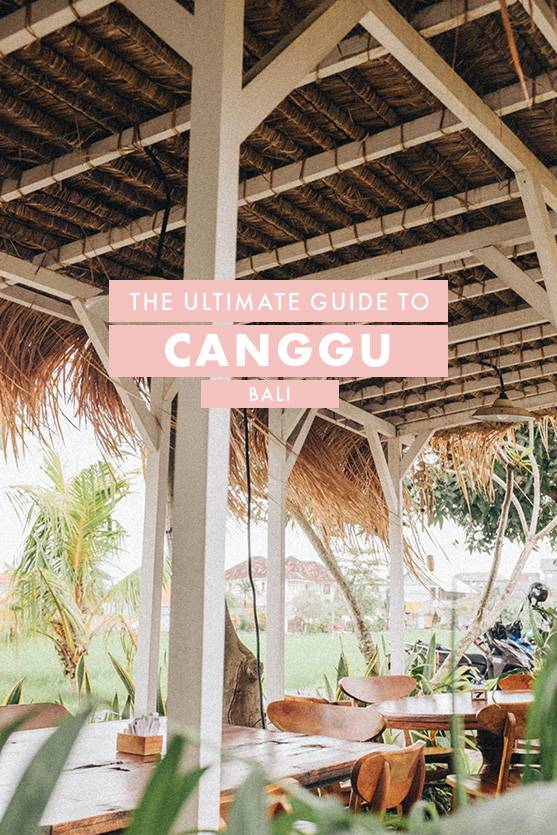 The Ultimate Guide to Canggu, Bali: Where to Eat, Shop and Play