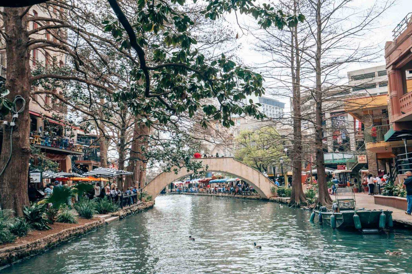 The Foodies Guide To San Antonio Texas