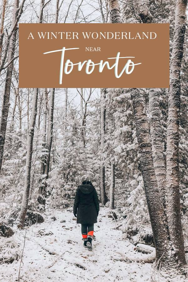 Wondering where to go near Toronto? If a perfect weekend getaway is what you're after, we've put together a travel guide to one of the best destinations in Canada and the Grey County. From things to do, to top restaurants for foodies and where to stay, here's the ultimate guide to Blumination in Canada! #Canada #Toronto