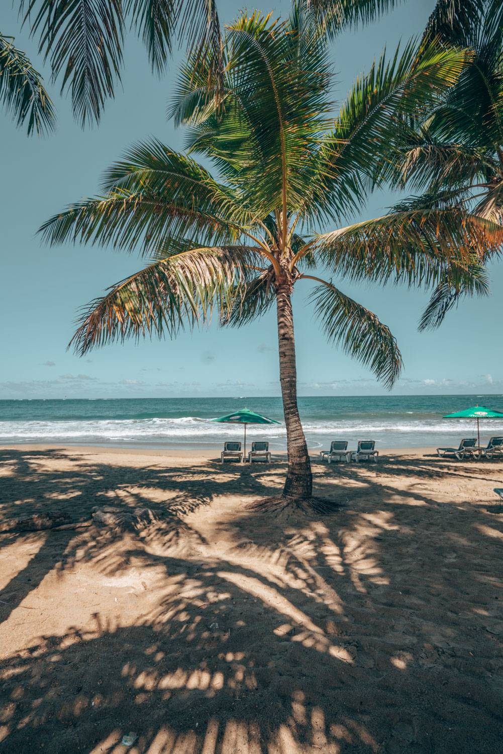 Looking for the best day trips from Puerto Plata to the best beaches in Dominican Republic? Well, we have you covered with a stop in Cabarete.