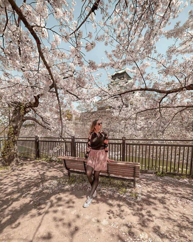 Sakura never goes out of style: aim your Osaka itinerary to visit around April or May